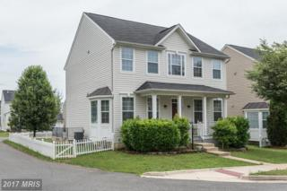 8873 Song Sparrow Drive, Gainesville, VA 20155 (#PW9879321) :: LoCoMusings