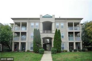 1031 Gardenview Loop #104, Woodbridge, VA 22191 (#PW9886867) :: LoCoMusings