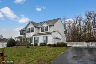 17921 Swans Creek Lane, Dumfries, VA 22026 (#PW9898847) :: Pearson Smith Realty