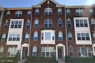 6253 Aster Haven Circle #24, Haymarket, VA 20169 (#PW9907422) :: Pearson Smith Realty