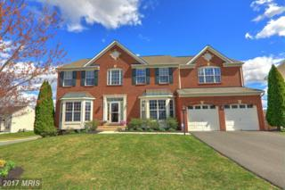 8549 Daltons Grove Way, Bristow, VA 20136 (#PW9909503) :: Pearson Smith Realty
