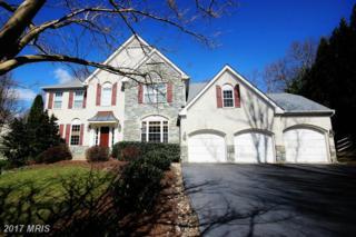6178 Treywood Lane, Manassas, VA 20112 (#PW9913650) :: Pearson Smith Realty