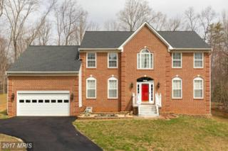 11501 Albrite Court, Manassas, VA 20112 (#PW9916227) :: Pearson Smith Realty
