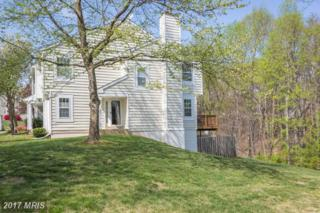 5211 Spring Branch Boulevard, Dumfries, VA 22025 (#PW9916433) :: Pearson Smith Realty