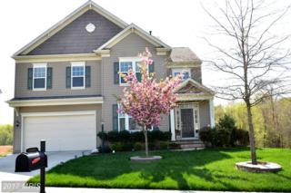 15425 Ann Arden Avenue, Woodbridge, VA 22193 (#PW9916763) :: Pearson Smith Realty
