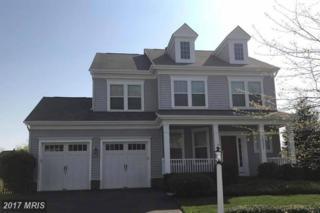 16321 Sandy Ridge Court, Woodbridge, VA 22191 (#PW9917033) :: Pearson Smith Realty