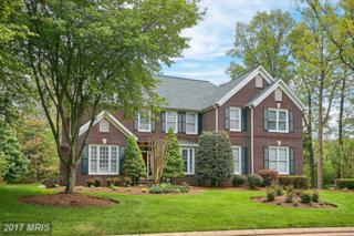 8079 Birnham Wood Court, Gainesville, VA 20155 (#PW9923788) :: Pearson Smith Realty