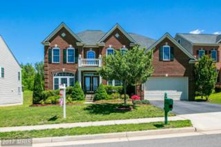 12932 Roberts Ridge Court, Bristow, VA 20136 (#PW9925638) :: Pearson Smith Realty