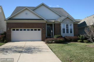 13491 Victory Gallop Way, Gainesville, VA 20155 (#PW9926495) :: Pearson Smith Realty