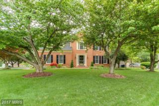16702 Ostenbury Court, Dumfries, VA 22025 (#PW9927252) :: Pearson Smith Realty