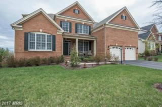 15705 Tanning House Place, Haymarket, VA 20169 (#PW9928165) :: Pearson Smith Realty