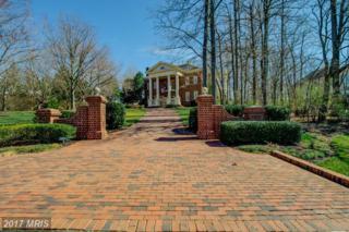 7965 Valderrama Court, Gainesville, VA 20155 (#PW9928727) :: Pearson Smith Realty