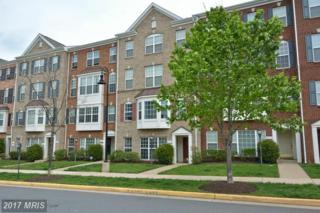 6289 Aster Haven Circle #5, Haymarket, VA 20169 (#PW9930370) :: Pearson Smith Realty