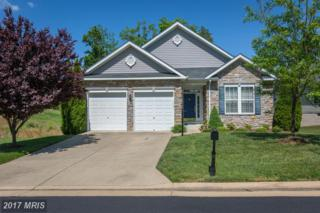 16230 Timid Creek Court, Dumfries, VA 22025 (#PW9937356) :: Pearson Smith Realty