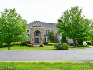 15854 Spyglass Hill Loop, Gainesville, VA 20155 (#PW9939415) :: Pearson Smith Realty