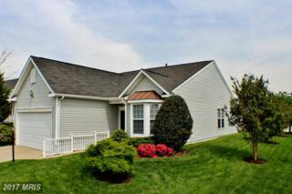 16433 Sparkling Brook Loop, Dumfries, VA 22025 (#PW9940021) :: Pearson Smith Realty