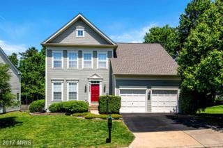 10025 Cairn Mountain Way, Bristow, VA 20136 (#PW9940051) :: Pearson Smith Realty