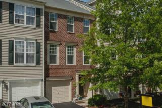 9131 Panther Falls Way, Bristow, VA 20136 (#PW9940122) :: Pearson Smith Realty