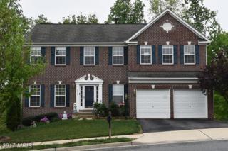 16507 Kramer Estate Drive, Woodbridge, VA 22191 (#PW9941605) :: Pearson Smith Realty