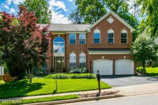 15813 Ibsen Place, Dumfries, VA 22025 (#PW9942947) :: Pearson Smith Realty