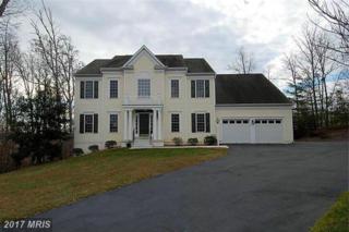 7685 Knightshayes Drive, Manassas, VA 20111 (#PW9944075) :: Pearson Smith Realty