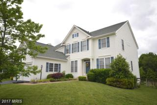 12688 Victory Lakes Loop, Bristow, VA 20136 (#PW9945396) :: Pearson Smith Realty