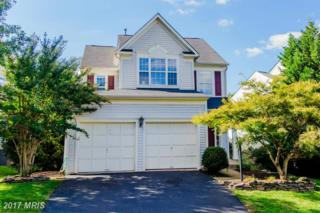 8142 Landfall Court, Gainesville, VA 20155 (#PW9945437) :: Pearson Smith Realty