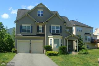 3680 Expedition Drive, Triangle, VA 22172 (#PW9946238) :: Pearson Smith Realty