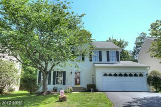 2902 Hickory Creek Court, Dumfries, VA 22026 (#PW9950041) :: Pearson Smith Realty