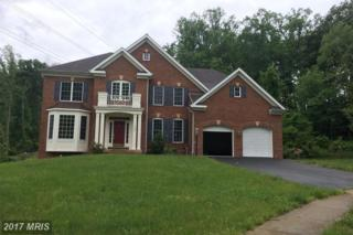 3423 Woolfenden Court, Triangle, VA 22172 (#PW9950094) :: Pearson Smith Realty