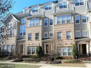 7166 Little Thames Drive #181, Gainesville, VA 20155 (#PW9950147) :: Pearson Smith Realty