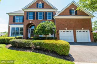 15755 Alexanders Mill Court, Haymarket, VA 20169 (#PW9951976) :: Pearson Smith Realty