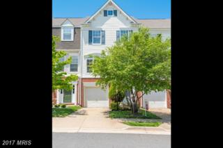 8126 Rainwater Circle, Manassas, VA 20111 (#PW9952605) :: Pearson Smith Realty