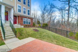 6095 Aster Haven Circle #136, Haymarket, VA 20169 (#PW9953587) :: Pearson Smith Realty