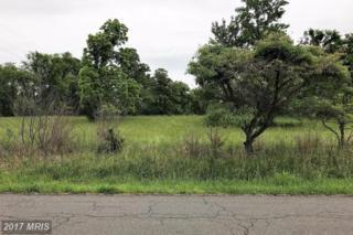 17016 Gaines Road, Broad Run, VA 20137 (#PW9954760) :: Pearson Smith Realty