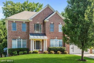 1132 Tournai Court, Woodbridge, VA 22191 (#PW9955054) :: Pearson Smith Realty
