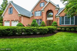 15073 Sycamore Hills Place, Haymarket, VA 20169 (#PW9956515) :: Pearson Smith Realty