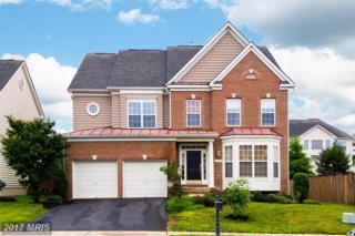 13624 Dodsworth Drive, Bristow, VA 20136 (#PW9958379) :: Pearson Smith Realty