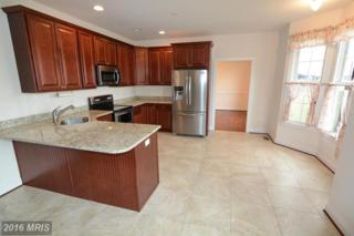 116 Browning Lane, Centreville, MD 21617 (#QA9822877) :: Pearson Smith Realty