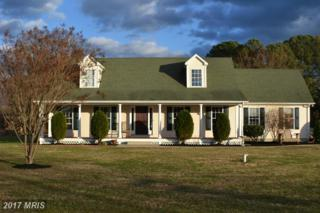 1513 Norman Road, Chester, MD 21619 (#QA9832958) :: Pearson Smith Realty