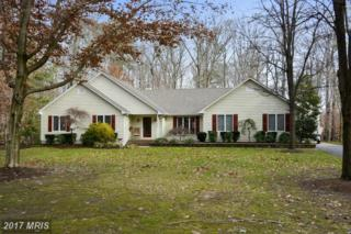 340 Prospect Bay Drive W, Grasonville, MD 21638 (#QA9836698) :: Pearson Smith Realty
