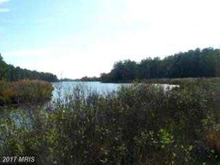 6509 Kent Point Road, Stevensville, MD 21666 (#QA9849237) :: Pearson Smith Realty