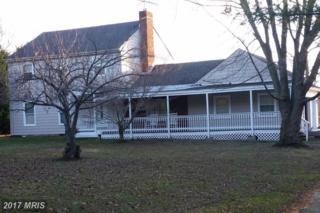 313 Lake Drive, Stevensville, MD 21666 (#QA9849484) :: LoCoMusings