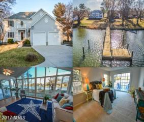 514 Broadcreek Drive, Stevensville, MD 21666 (#QA9851700) :: Pearson Smith Realty