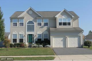 116 Meadowcroft Drive, Centreville, MD 21617 (#QA9856126) :: LoCoMusings