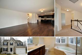 1509 Norman Road, Chester, MD 21619 (#QA9857963) :: Pearson Smith Realty