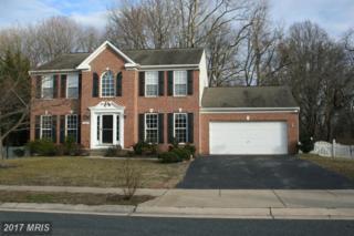 113 Granard Avenue, Centreville, MD 21617 (#QA9864826) :: Pearson Smith Realty