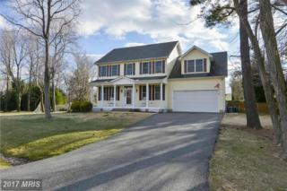 601 Broad Creek Drive, Stevensville, MD 21666 (#QA9865677) :: Pearson Smith Realty