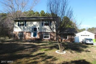 9307 Romancoke Road, Stevensville, MD 21666 (#QA9865933) :: Pearson Smith Realty
