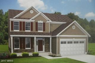 171 Meadow Brook Way, Centreville, MD 21617 (#QA9869827) :: Pearson Smith Realty